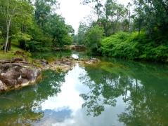 Privassion River in the Mountain Pine Ridge Forest Reserve
