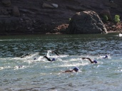 Horsetooth reservoir swim